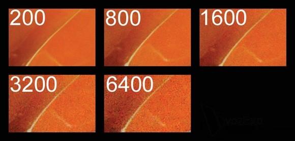 Tìm hiểu khẩu độ iso và tốc độ màn trập