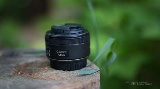 Những lens chân dung tuyệt vời cho máy crop