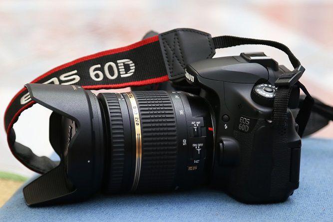 Nên mua máy ảnh nào cho người mới tập chơi