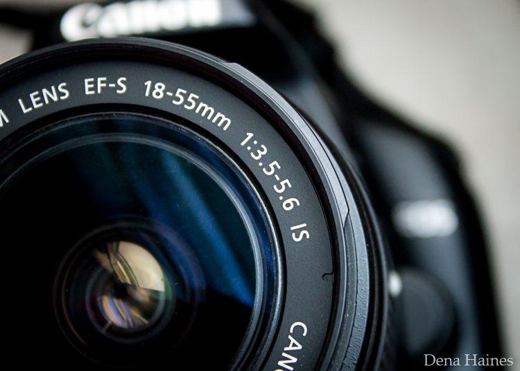 Nên mua lens nào chụp đa dụng tốt