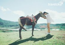 Những địa điểm chụp ảnh ngoại cảnh đẹp ở Đà Lạt