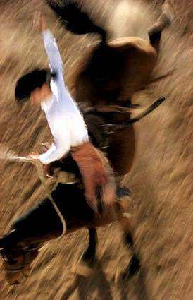 Đua ngựa, ảnh chụp năm 1957 của tác giả Ernst Haas.