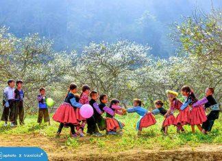 Top 100 ảnh đẹp lọt vào vòng 2 của cuộc thi ảnh Tết Tây - Tết Ta