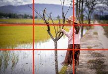 10 nguyên tắc bất biến để chụp ảnh đẹp như ý muốn