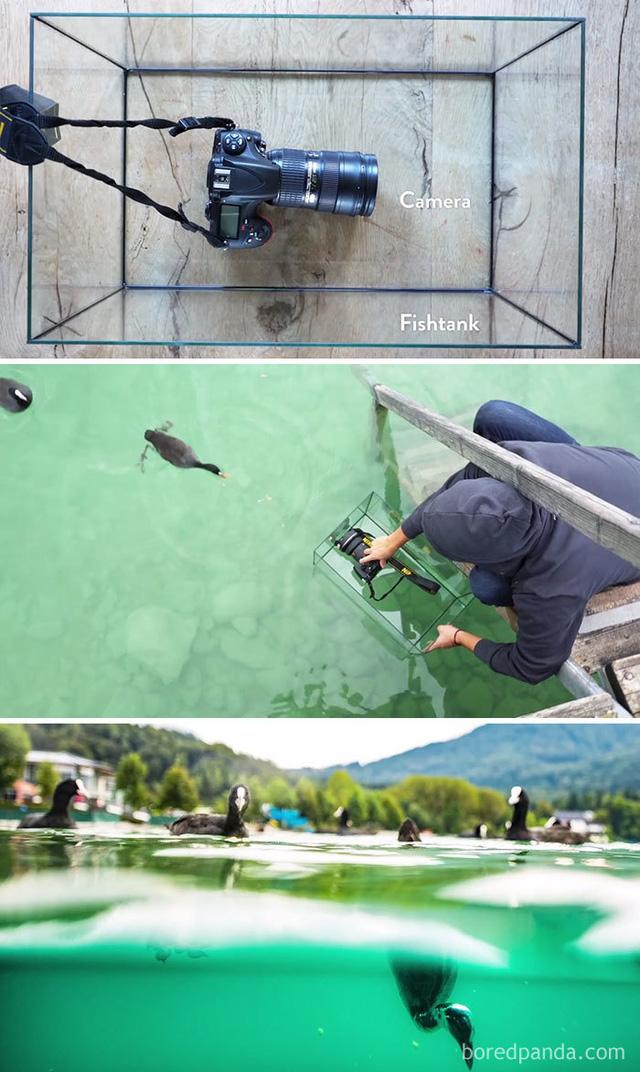 Chụp một bức ảnh dưới nước liệu có khó không?