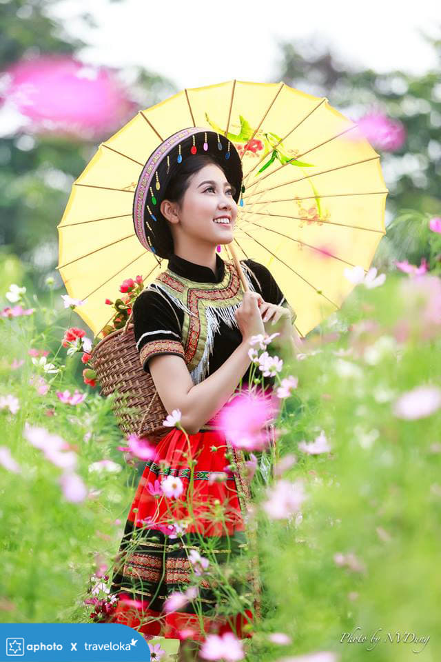 Tác giả: Nguyễn Dũng