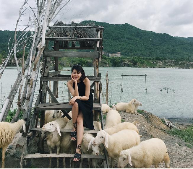 Phía bên hồ còn có cả một đàn cừu rất thân thiện