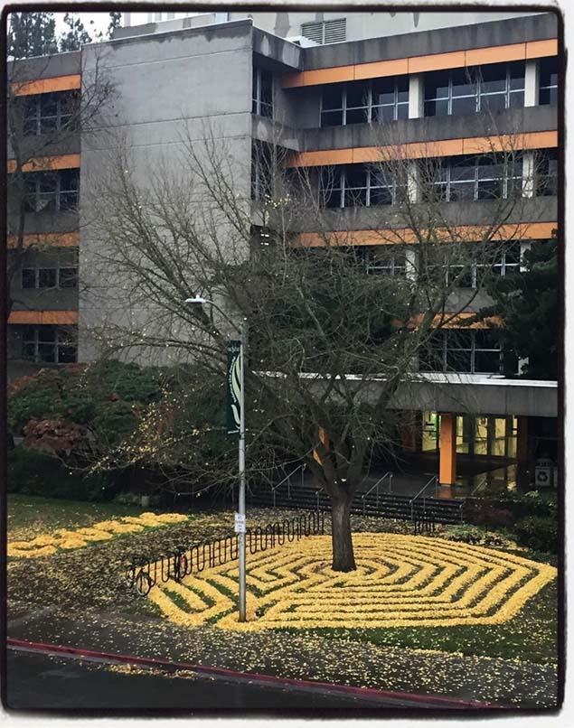 Đây không chỉ là tác phẩm nghệ thuật mà dường như là công việc giải quyết những chiếc lá rơi