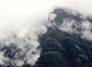 Mách bạn các cách chụp ảnh trong sương mù siêu đẹp
