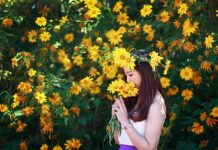 Ngất ngây với 5 địa điểm chụp ảnh với hoa Dã Quỳ đẹp như thiên đường ở Đà Lạt