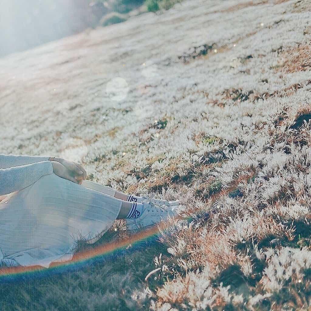 Chỉ đường hai đồi cỏ hồng đẹp nhất Đà Lạt