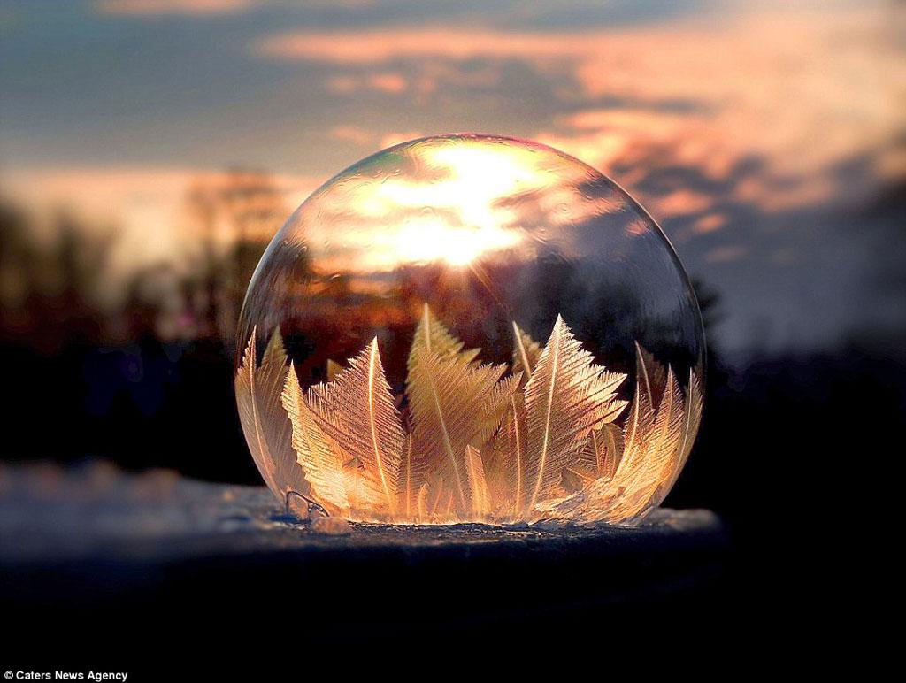 Ánh sáng trực tiếp và ánh sáng khuếch tán