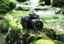 Top 5 máy ảnh full frame DSLR tốt nhất 2019