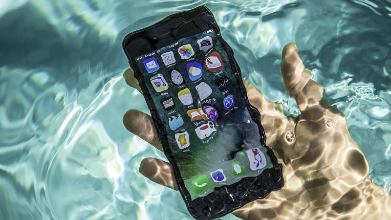 Chụp ảnh dưới nước