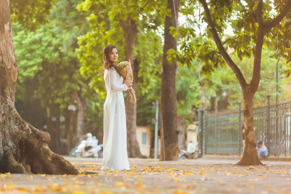 Những cung đường có cây xanh đang mùa thay lá thì nhiều lắm nha như đường Nguyễn Du, Trần Phú, Hoàng Diệu, Phan Đình Phùng, Kim Mã.