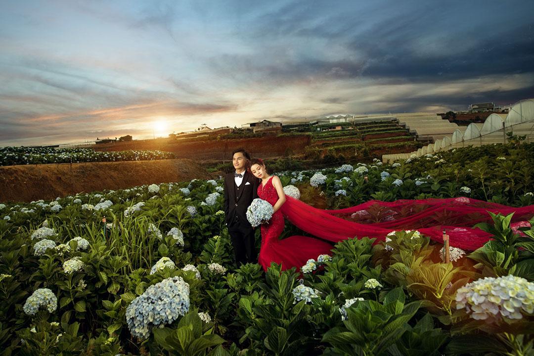 Studio Đà Lạt - Địa điểm chụp hình cưới đẹp tại Đà Lạt