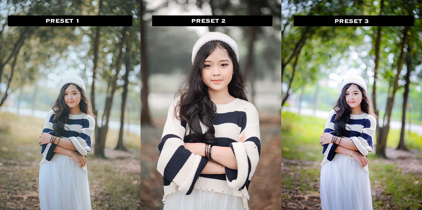 Tổng hợp preset chân dung đẹp sử dụng cho lightroom cc mobile