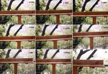 Tìm hiểu tốc độ màn trập của máy ảnh