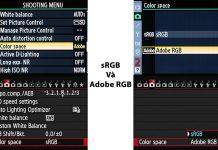 Nên thiết lập sRGB hay Adobe RGB