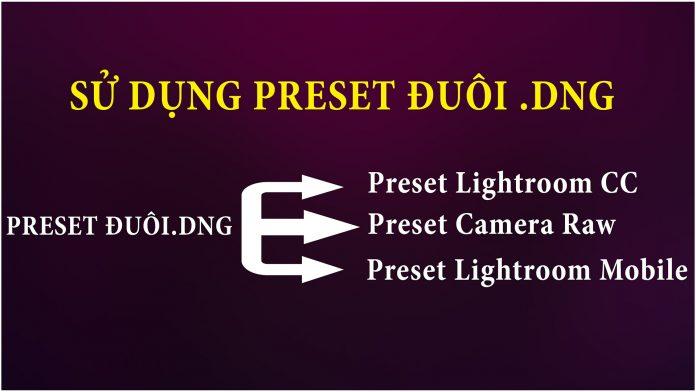Cách sử dụng dụng preset đuôi DNG cho Lightroom, Camera Raw và Lightroom Mobile