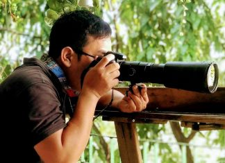 Mẹo chụp ảnh bằng lens tele để ảnh nét căng không bị out nét hay nhòe