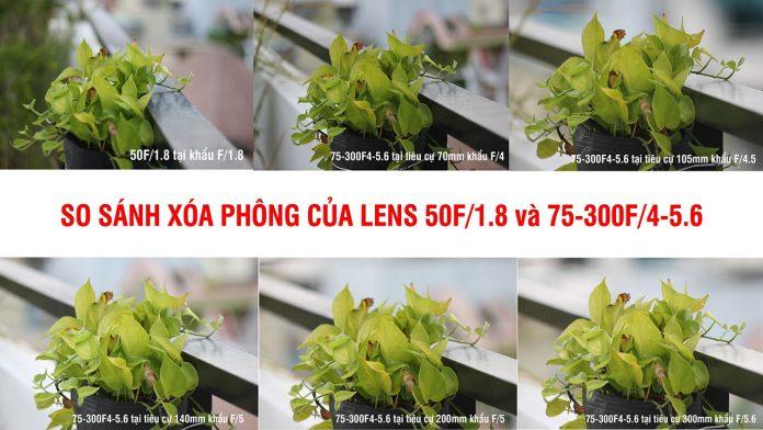 So sánh xóa phông của 50F1.8 và 75-300F4-5.6